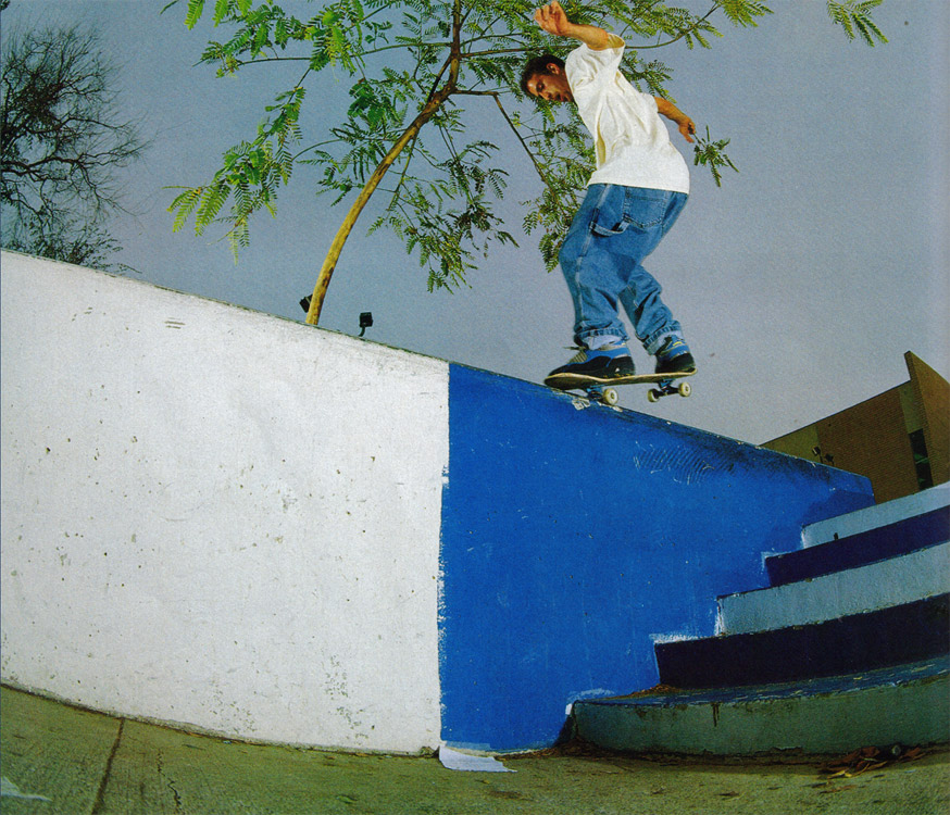 Guy Mariano Nose Wall